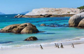 Cape-Peninsula